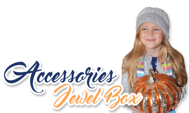 Accessories Jewel Box