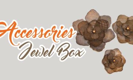Accessories Jewel Box